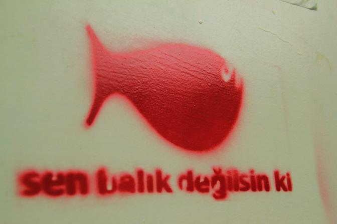 Sen Balık Değilsin Ki – Çıplak Ayaklar Kumpanyası